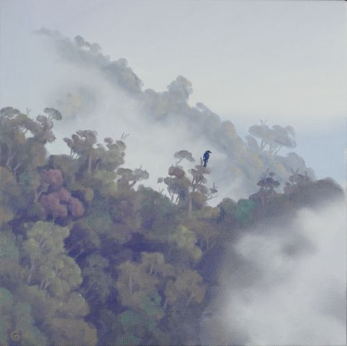 Currawong in the Mist